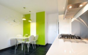 hotte aspirante designe dans cuisine verte